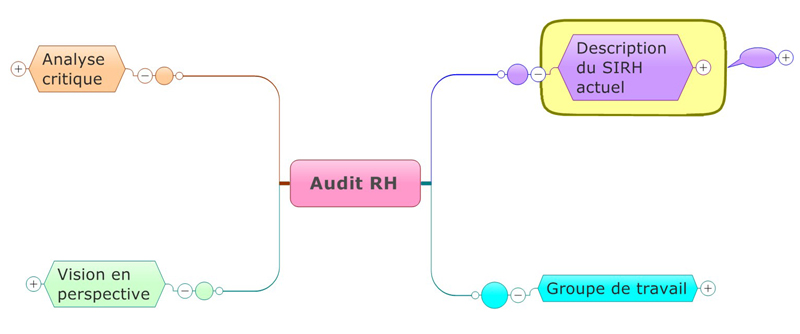 Audit RH : Diagnostic-processus outils
